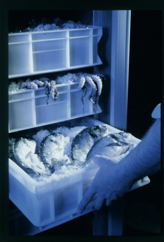 Refrigerated cabinets range apx 300