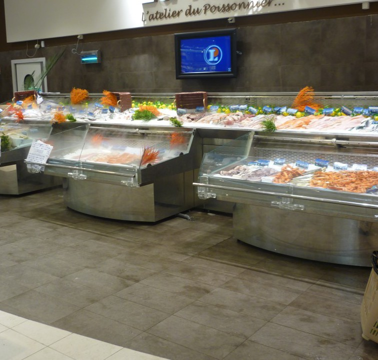 Deluxe double fish display